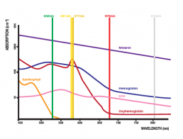 absorption Chart | TriLas Medical